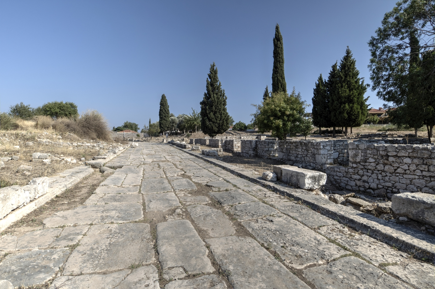 Well-preserved section of the Sacred Road from Miletus to Didyma, near the Temple of Apollo at Didyma