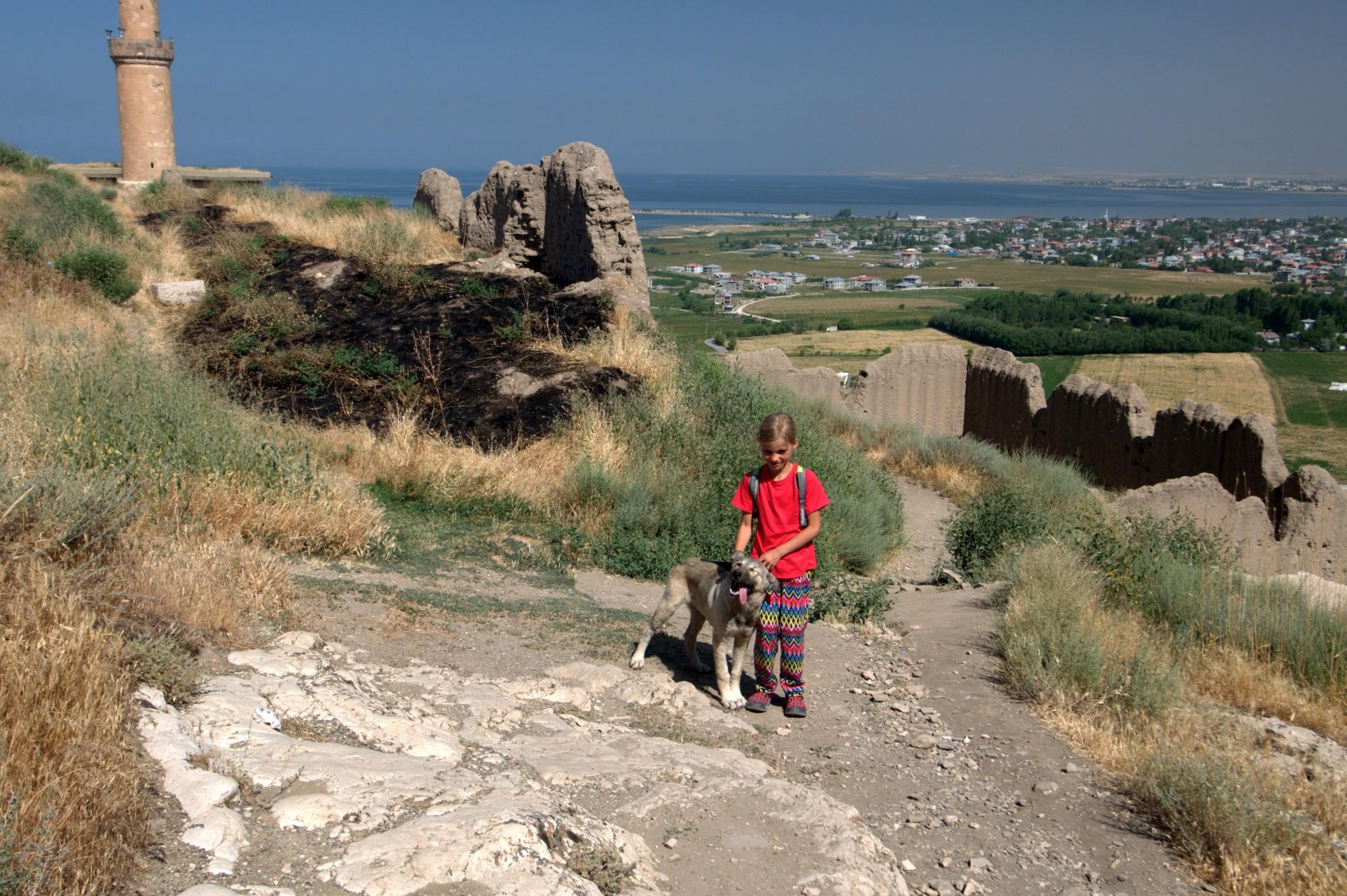 Tola z pieskiem na zamku Van