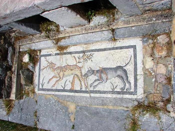 Mozaika podłogowa w grobowcu (zdjęcie autorstwa Lukromana)