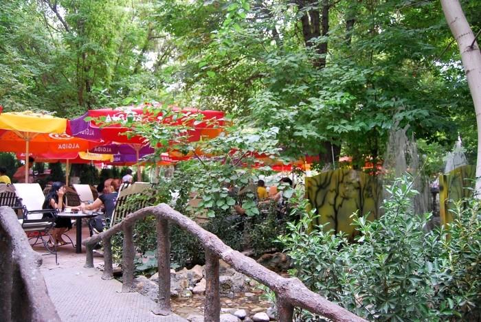 Ogród herbaciany w centrum Malatyi