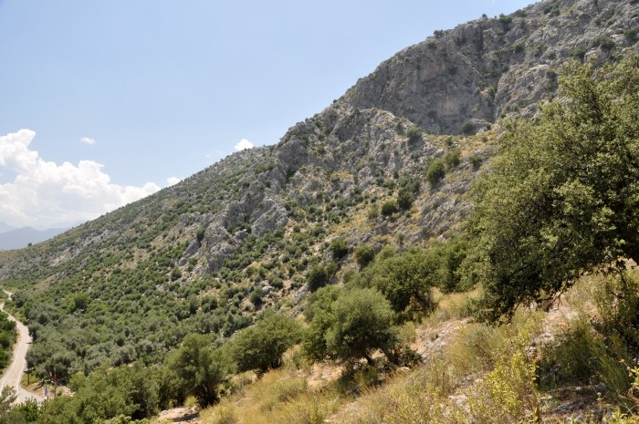 Strome zbocza góry Sam Dağı