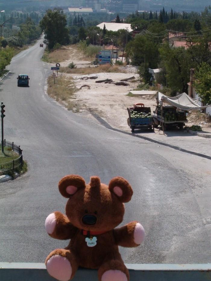 Pooky w Yatağan