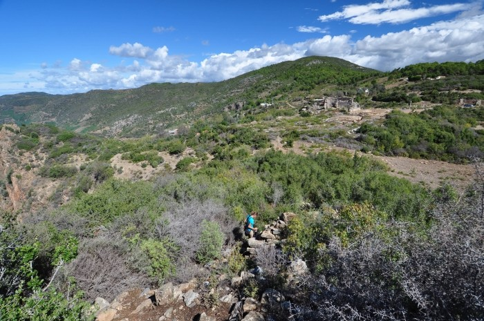 Droga na akropol Antiochii ad Cragum