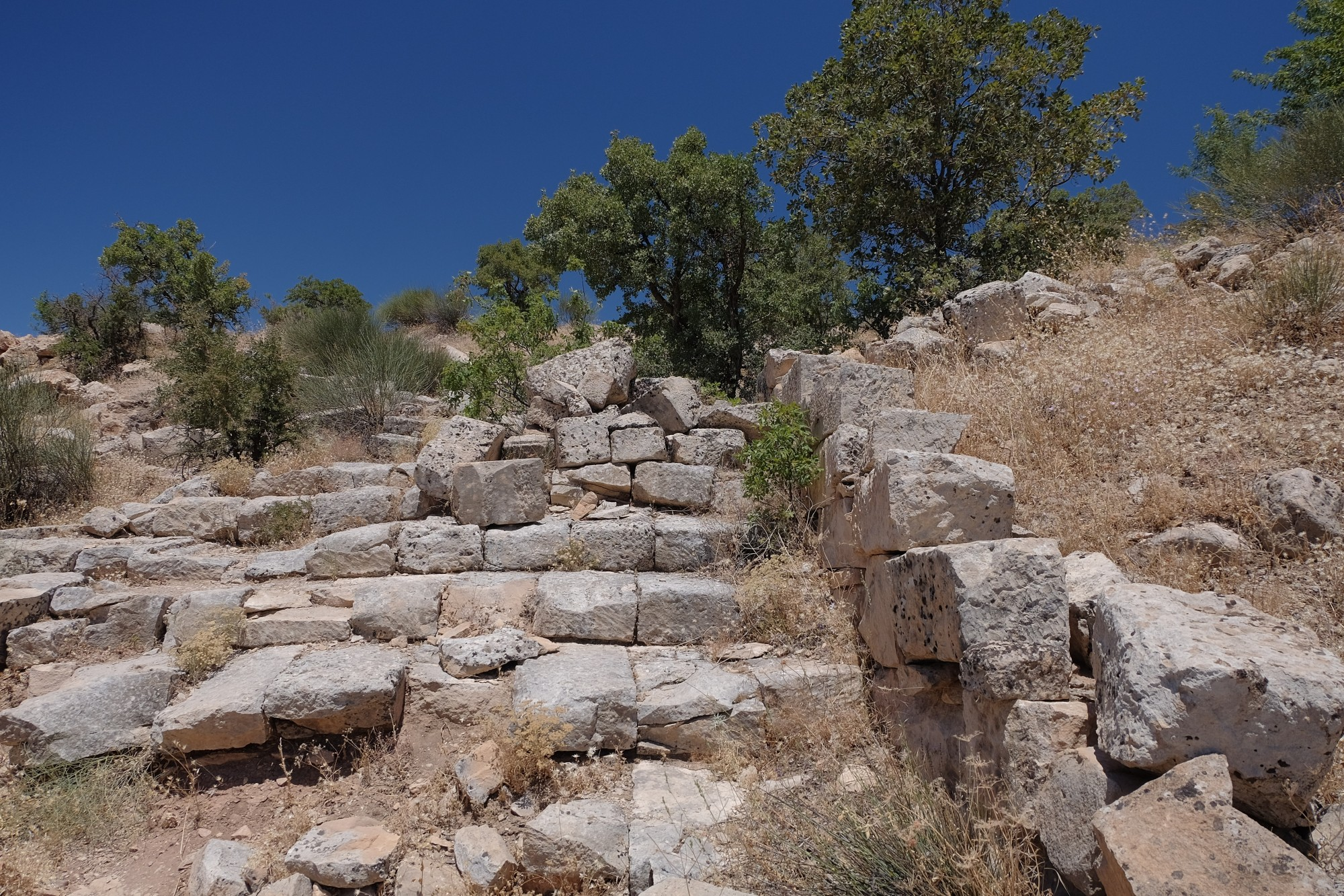Processional Road to the Acropolis of Arsameia