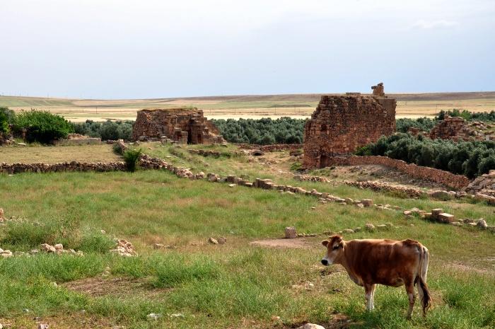 Widok na fortyfikacje Dary i wyschnięte koryto rzeki