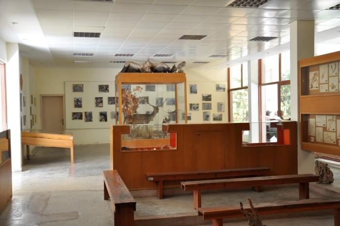 Muzeum Flory i Fauny