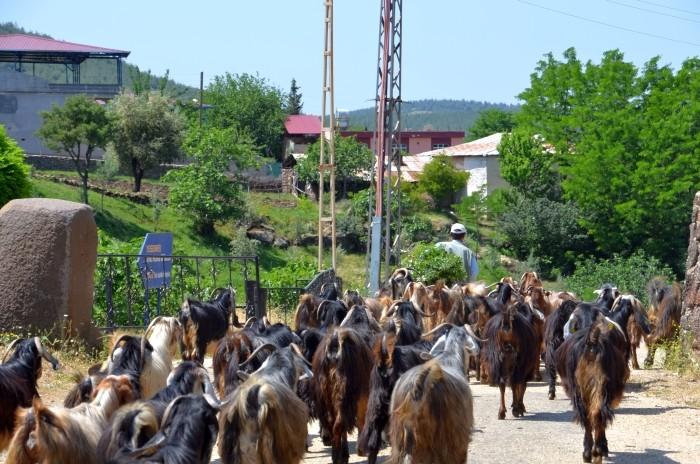 Utrudnienia na drodze dojazdowej do Yesemek