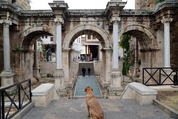 Brama Hadriana