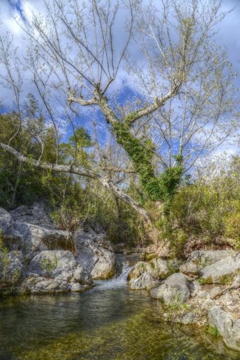 Wzdłuż potoku