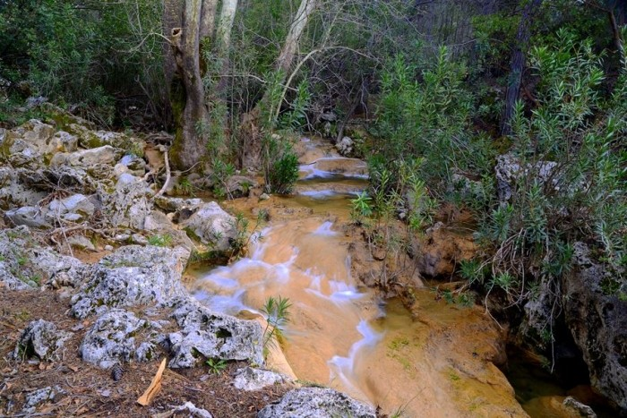 Potok na ostatniej prostej